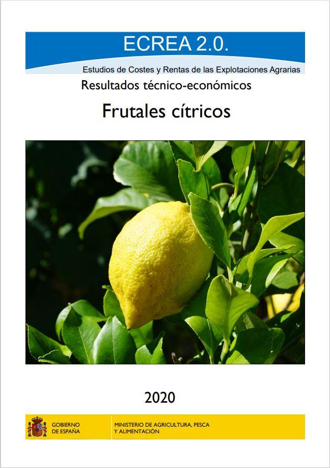 Cubierta de ECREA. Estudios de Costes y Rentas de las Explotaciones Agrarias
