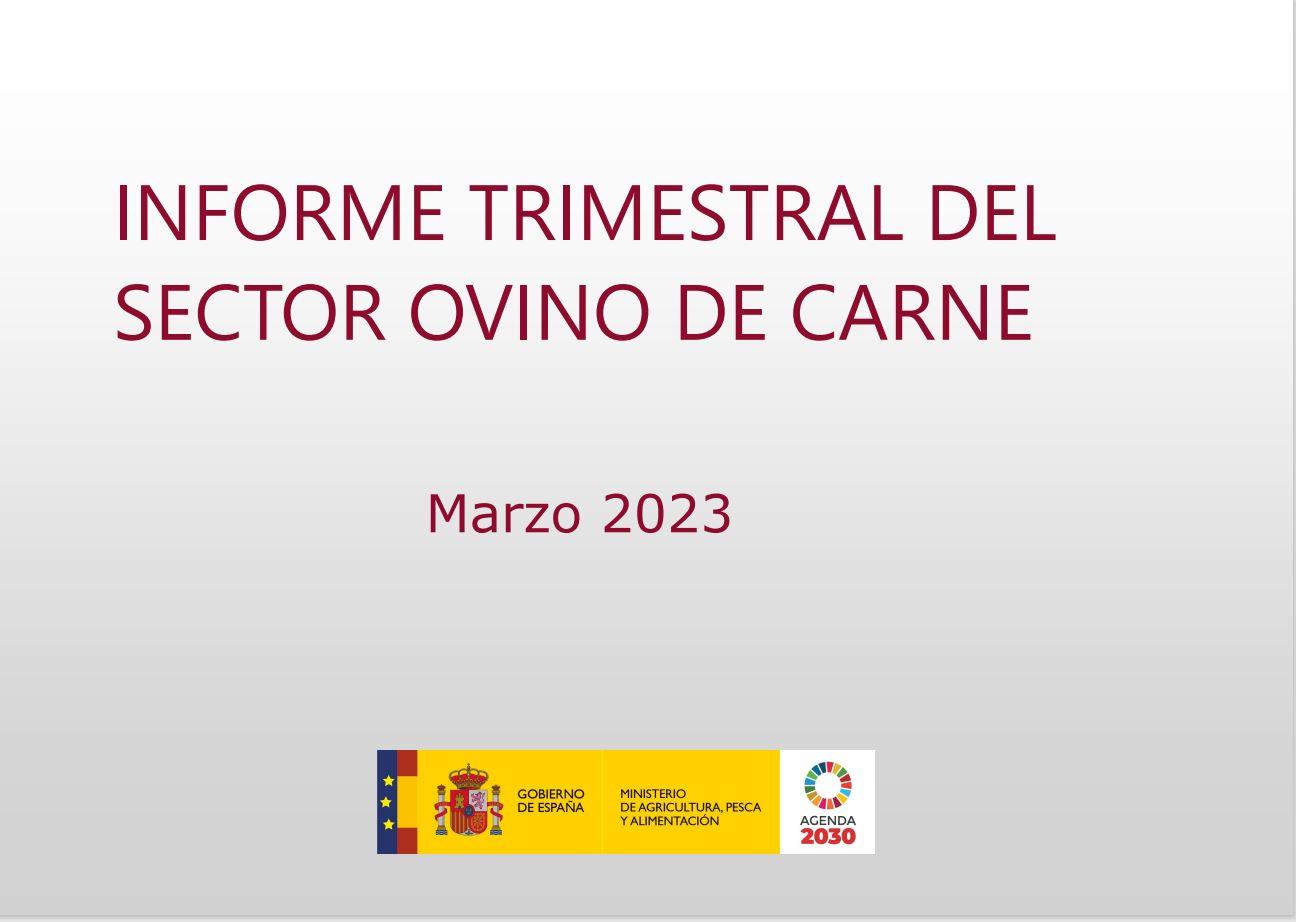 Cubierta de Informe Trimestral sobre el Sector Ovino de Carne